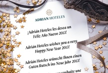 Adrian Hoteles / The Adrián family runs three exceptional hotels: Jardines de Nivaria 5*, Roca Nivaria Gran Hotel 5* and Colón Guanahaní 4*. All three are located in Costa Adeje in southern Tenerife. The company's goals are to ensure the wellbeing of its clients and to improve social development.  / by ADRIAN HOTELES