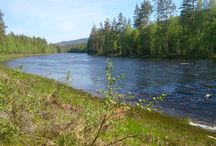 Fishing spots @Finnskogene / What to find and where to find it... and some secrets too....