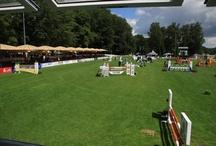 Landesturnier 2012 / Das 64. Oldenburger Landesturnier fand vom 17. bis 22. Juli 2012 im Rasteder Schlosspark statt.