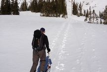BC Skiing