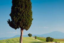Toscana da vivere - Enjoy Tuscany / Tuscany, Toscana, Siena, SPAS, Val d'Orcia
