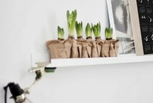 Plant en flowers / Just a little bit green in your home!