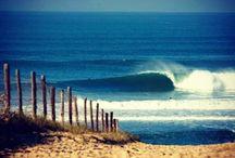 Summer Surf Trip Yaaaaa
