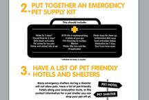 Animal Disaster Preparedness Day (May 8th) / When you prepare for a disaster, remember to prepare to take care of the whole family – including your pets.