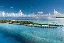 My Maldives / The Maldives is simply breathtaking. Holidays & More www.mymaldives.com.au