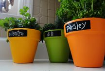 Jardin/terraza/plantas