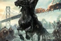 Movie- Dawn of the Planet o the Apes
