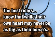 For the love of Horses!