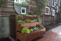Repurpose / by Living Homegrown