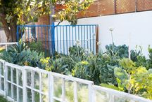Garden//Outdoor Spaces / by Brittany Carlson