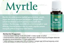 Young Living Myrtle Essential Oils
