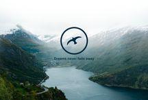 Scoutripper Blog Mobile App Design