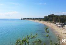 HalkidikiTravel.com - Ai Giannis beach in Halkidiki