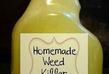 home made weed killer