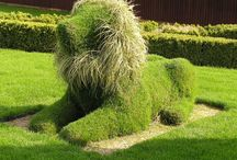 Love topiary gardens? / Topiaries that inspire, amaze, or instill good old-fashioned awe! / by Question and Planter