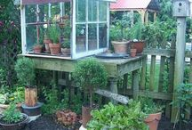 Potting sheds & greenhouses  / by Sarah Little