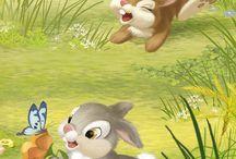 Cute Rabbits ♡