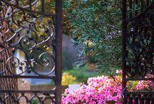 ~ Terrazzi & giardini~