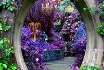 Magical gardens - not  fairy
