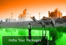 Tour packages in india / We go that extra mile to ensure your tour packages to India are a success. Nose-dive into ecclesiastic mirth and lose yourself in the serenity of nature.