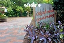 Videos | Water / Here are some helpful videos from Oklahoma Gardening that have anything to do with water. Topics include water gardens, water wise, irrigation, irrigation kits, water garden maintenance, and water conservation.