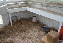 Fagertuns Hønseprosjekt