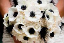 Witte Bruiloften