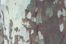 Camoo / Kaki,army,tendance ,camouflage