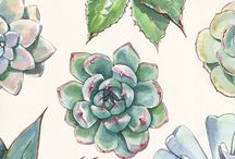 Inspiration Gallery: Watercolour