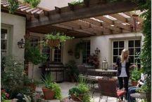 Outdoors/garden / Gardening
