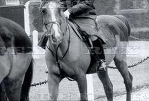 january 1 1987 / Princess Diana Rides At Sandringham.