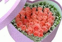 corazones.florales