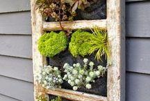 Déco extérieur et jardinage