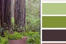 colour scheme - the beautiful