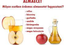 ALMAECET