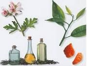 Essential Oils / Essential oils are truly gifts from the ground!  For more information, please visit: www.irenefross.com