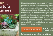 Hypertufa Containers / by Pam Rutledge