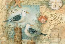 madár képeslap / bird postcards Vintage colorful transzfer transfer
