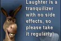 Laughter  / All that I am after... is a life full of laughter