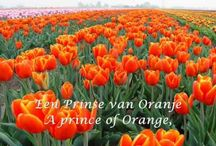 Dutch - Orange - Oranje