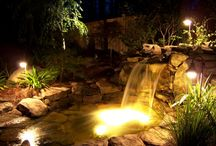 Ponds at Night / Just because the sun goes down doesn't mean you can't enjoy your pond!