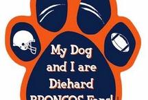 Denver Broncos / by Margaret Facer