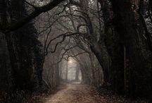 Gothic Environment