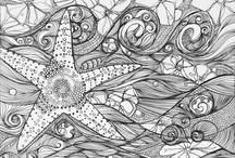 Black&White / Drawing