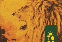 CD TOPA