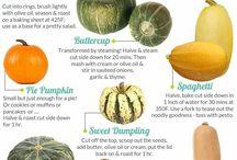 Pumpkin,squash