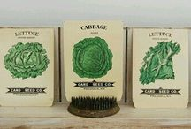 Vintage Seed Packets / by Donna Mc.