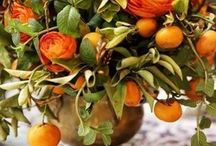 Fall centerpieces / by Doris Muncy
