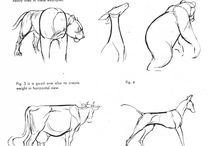 animating animals