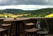 Oregon Wines & Winery Events / by Rachel Stewart Trice